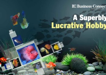 A Superbly Lucrative Hobby - Business Connect