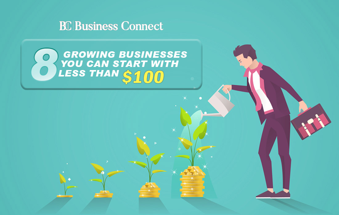 8 Growing businesses | Business Connect