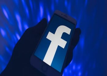 FACEBOOK IN INDIA   Business Connect