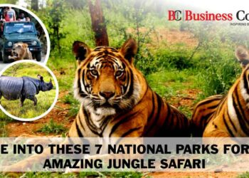 Ride Into These 7 National Parks for an Amazing Jungle Safari