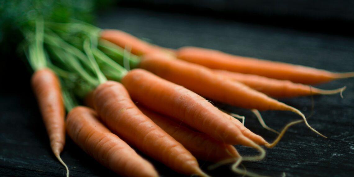 Carrot   Winter food
