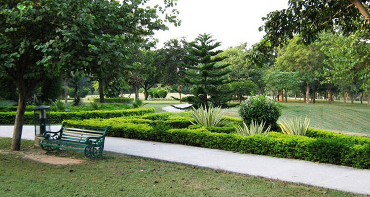 Laser valley   Top 5 Places to visit in Chandigarh