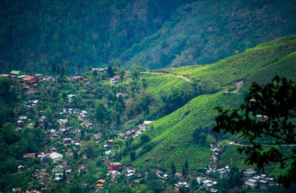 Darjeeling to Pelling Road Trip   Top 10 Best Road Trip in India