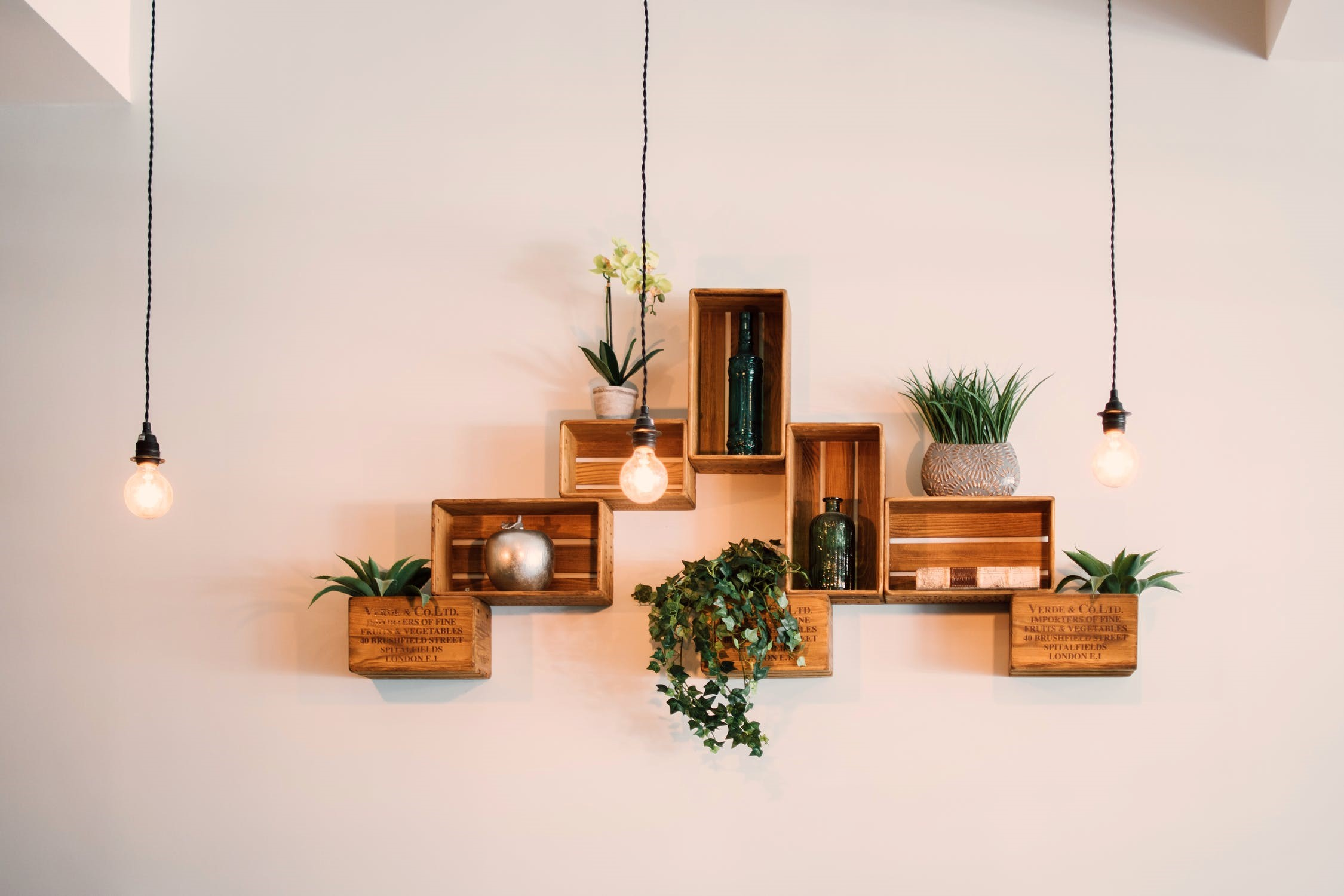 10 Budget-Friendly Options for Styling Your Rental Property | Brighten Up Your Property with Greenery